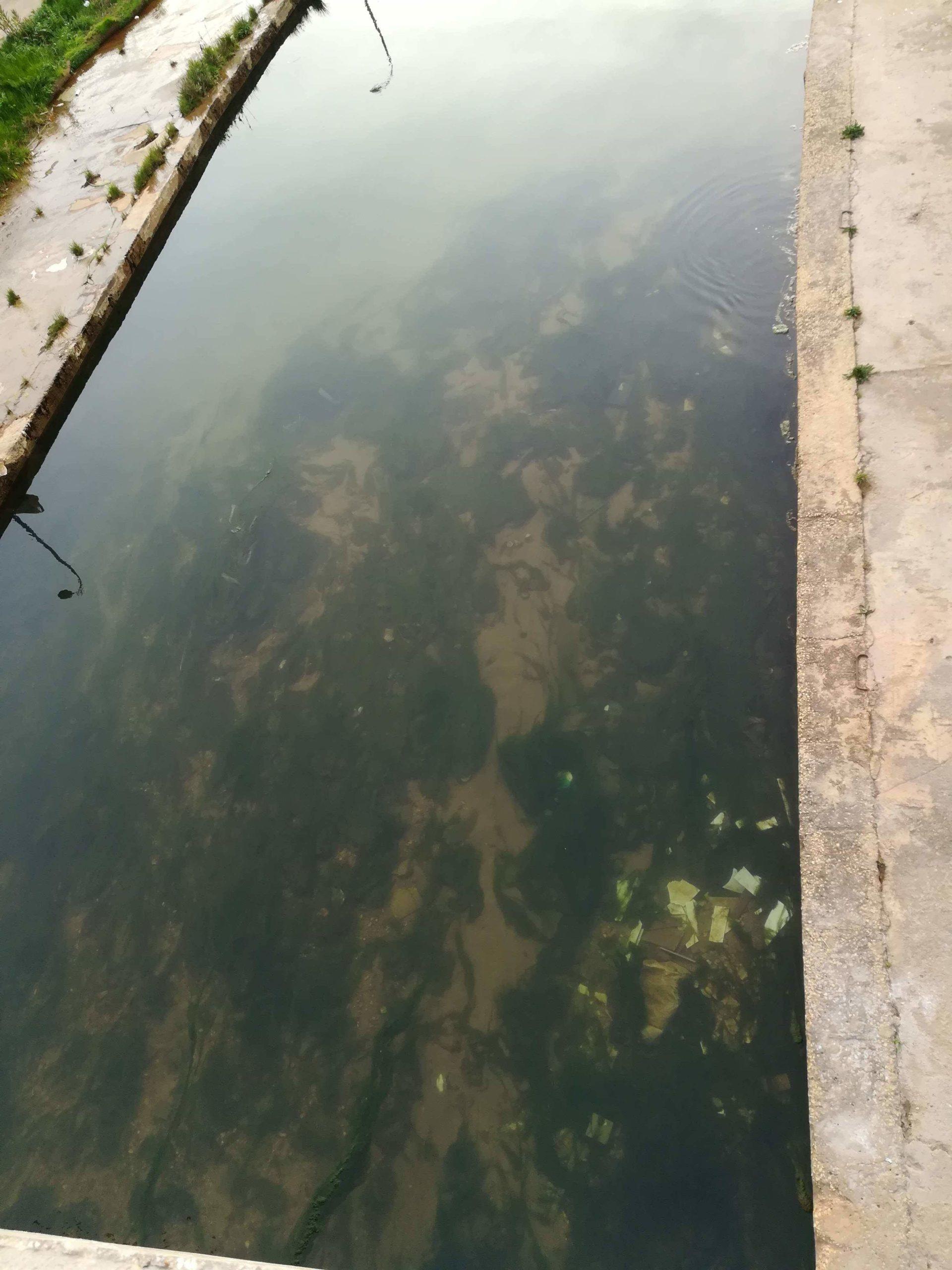 نهر الغمة - رمز يصارع البقاء