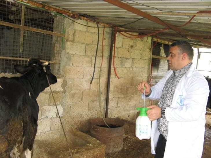 محافظ طرطوس يجول على مزارع الأبقار في ريف المحافظة