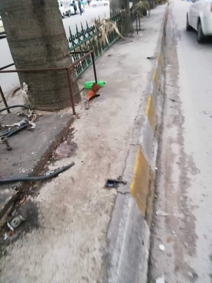 مجلس محافظة طرطوس يمنع اشجار المدينة من الماء
